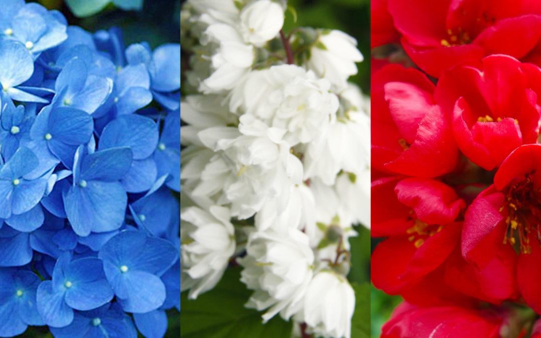Production française