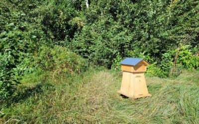 Une ruche pas comme les autres débarque sur la pépinière !